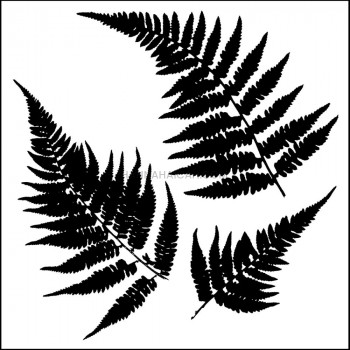 Template - Mini Ferns