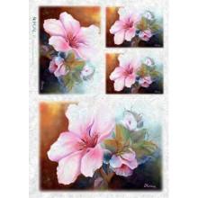 Carta di riso - Orchidea